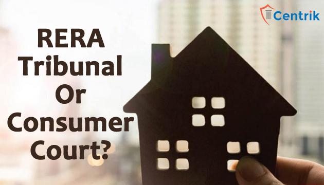file-a-case-in-RERA-Tribunal-or-Consumer-Court
